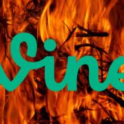 logo Vine sur fond de flammes