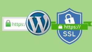 logos WordPress SSL HTTPS